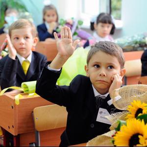 Школы Волошки